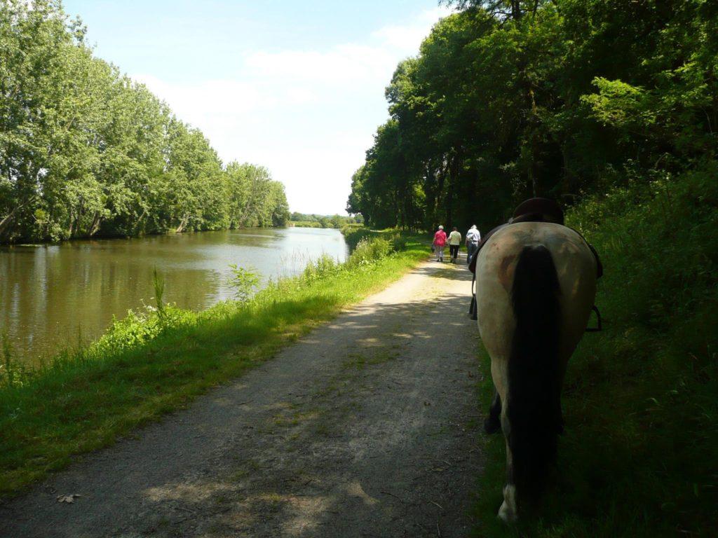 balade-equestre-canal