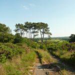 balade-paysage-bretagne