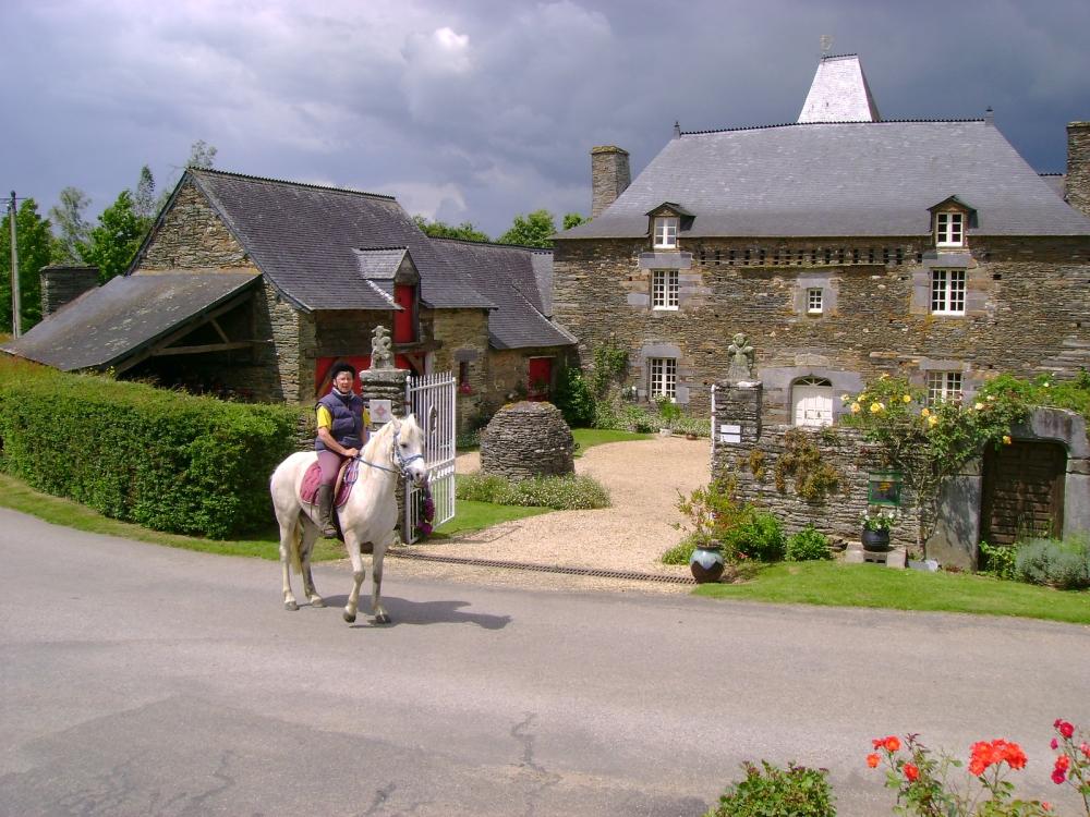 cheval-maison-morbihan-bretagne