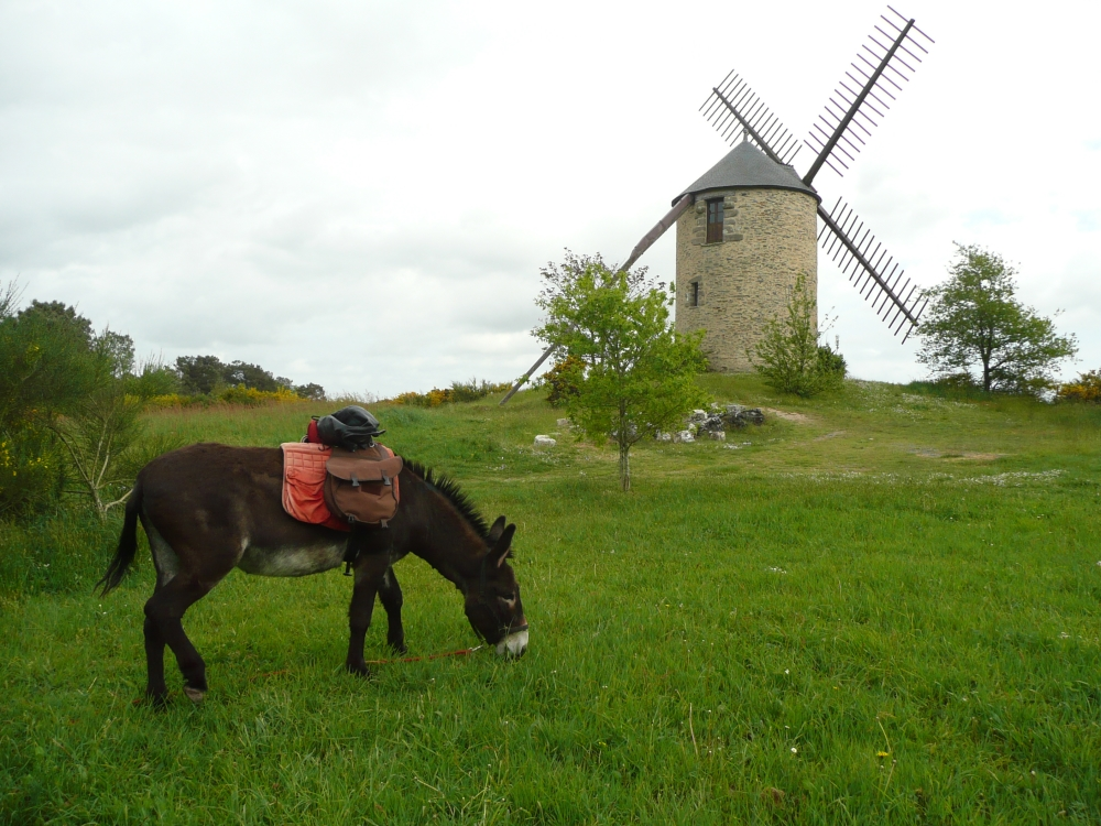 rando-ane-moulin-morbihan