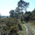rando-equestre-sentier