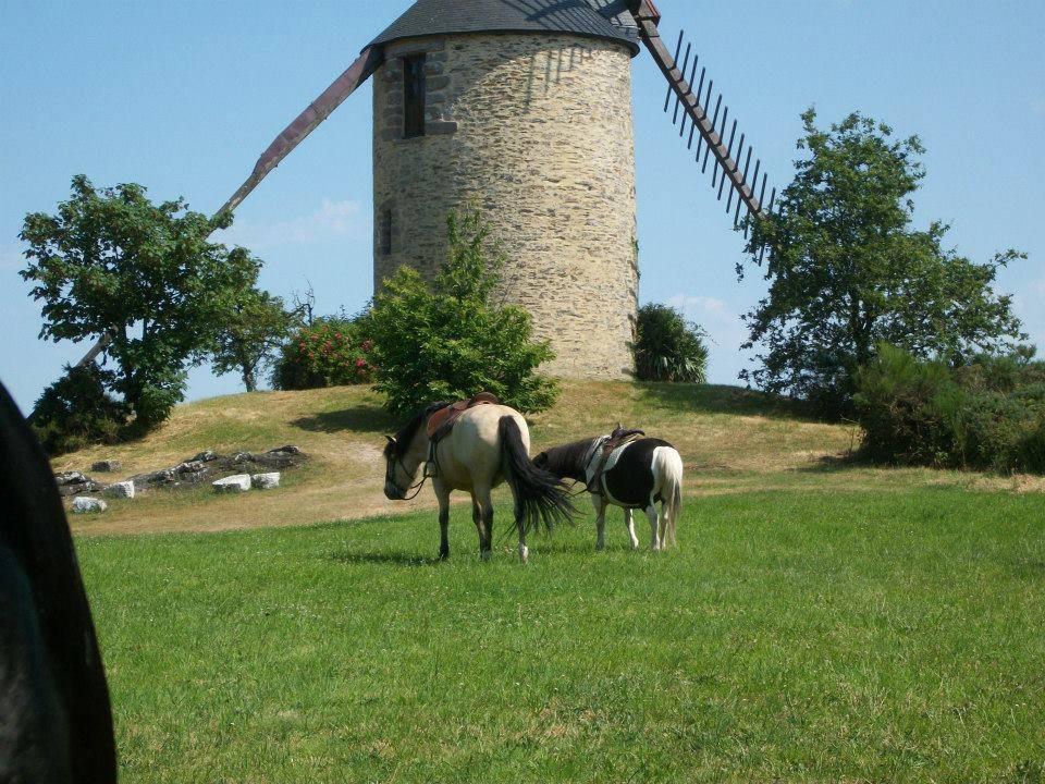 rando-equestre
