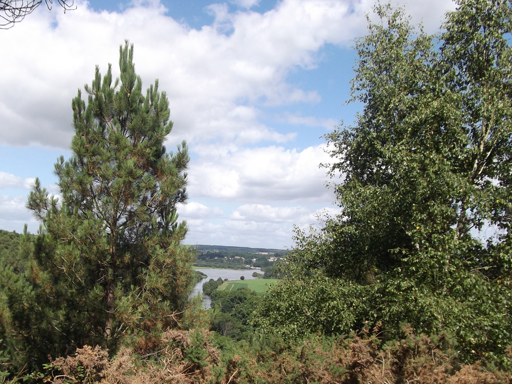 ile-aux-pies-vue-bretagne